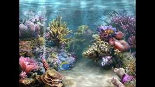Baixar ALMA CON ALMA sung live byMARIELLA KRONFLE /PRODUCED BY EGBERTOGARCIA 1997