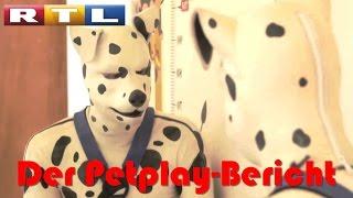 Mein Statement zum RTL-Bericht über Petplayer   Nebaka