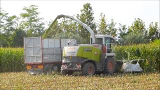 CASONATO   Silomais 2013 CLAAS JAGUAR 870 FULL HD