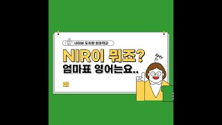 NIR level 1,…