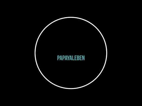 papayaleben-magnetic-dry-erase-refrigerator-calendar-board-full-set