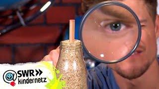 WissQuiz - Trick mit dem Stift im Reis | Tigerenten Club | SWR Kindernetz