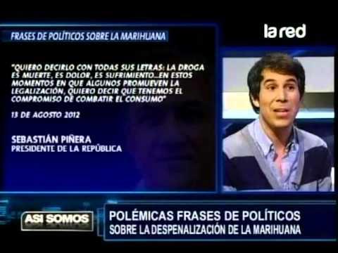 En Sección Frases De Políticos Sobre La Marihuana Muestran Las De Piñera Y Rossi