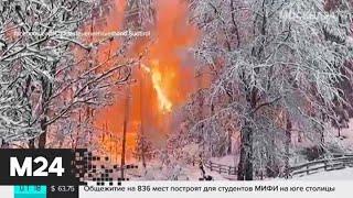 Новости мира за 19 ноября - Москва 24