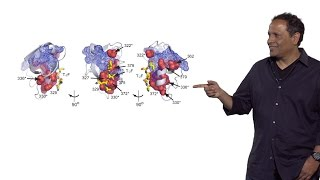 Rama Ranganathan (U. Texas Southwestern) Part 3: Protein Function and Adaptability
