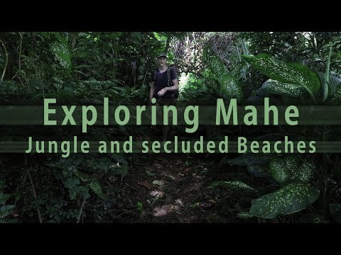 Mahe Jungle Hike, secret Beaches and how to open a Coconut