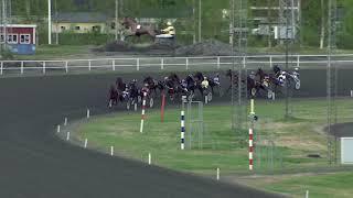 Vidéo de la course PMU POANGJAKTEN-P21-LOPP