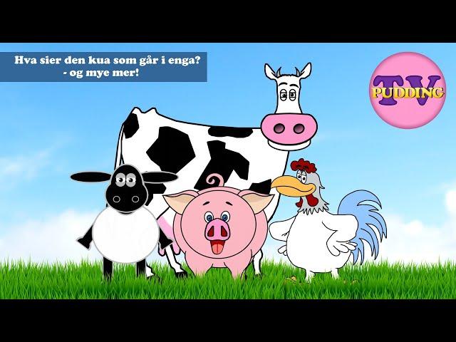 Hva sier den kua som går i enga? - og mye mer!   Norske barnesanger