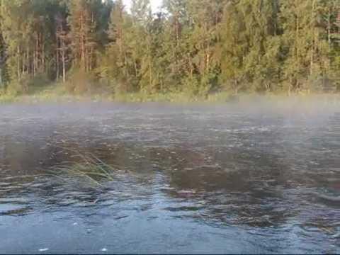 Реки Вологодской области