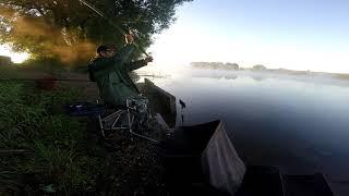 Когда ПИКЕР предпочтительнее Фидера Рыбалка на Москве реке в Маришкино 3 сентября 2021