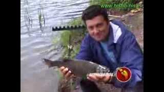 Svet Ribolova - Bovansko jezero, feeder