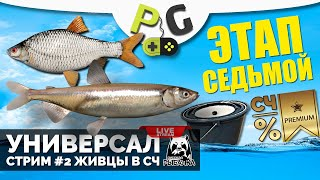 Русская Рыбалка 4 Стрим Прокачка УНИВЕРСАЛА для 7 го этапа Стрим 2 Качаем наживку живцами