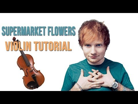 Supermarket Flowers Violin Tutorial EASY Sheet Music Download and Piano part