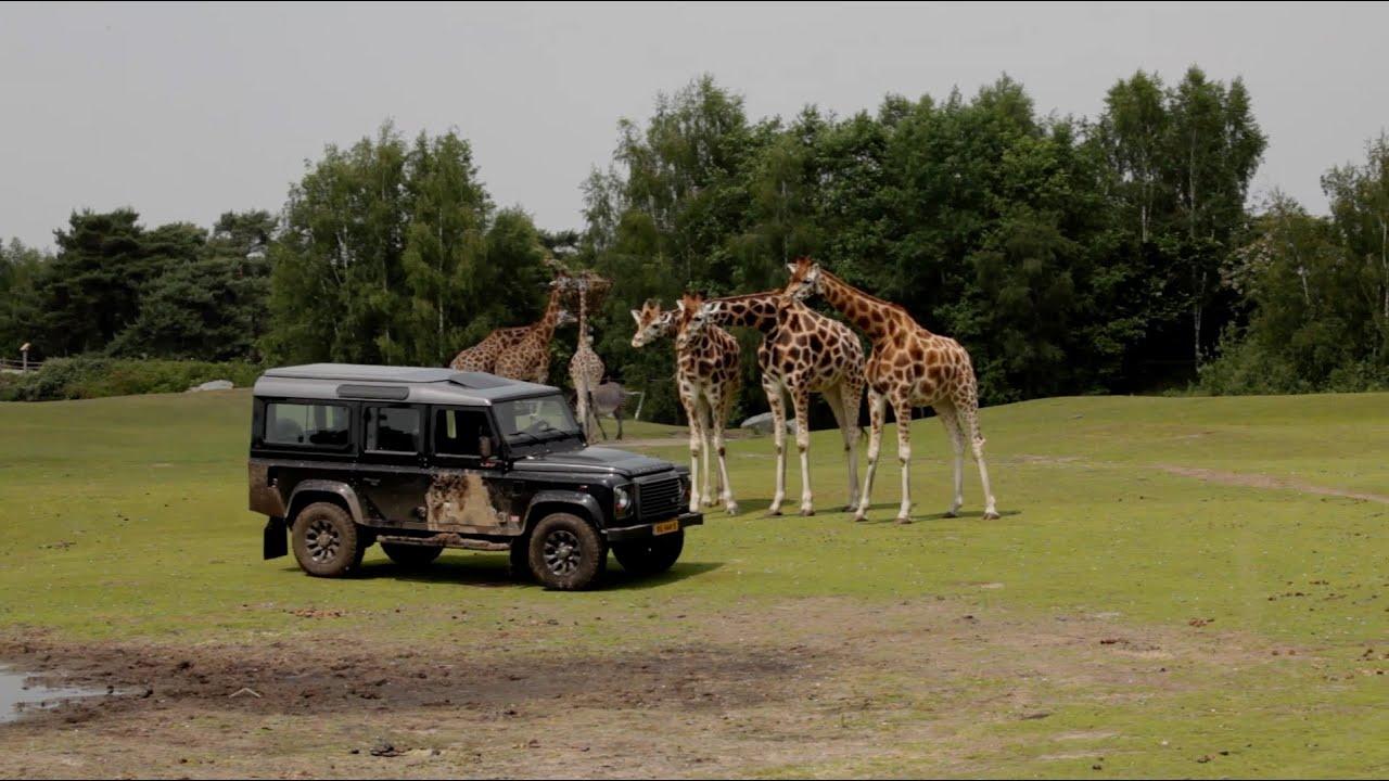 Autovisie op safari met Land Rover Defender review Autovisie TV