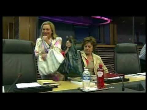 Mairead McGuiness European Parliament Tour 1_xvid.avi