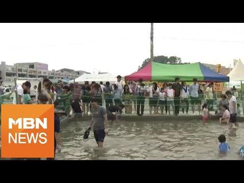 [충남] 서해안 대하잡이 한창…축제장은 '북적북적'