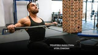 Тренировка мышц спины. Игорь Семиохин.