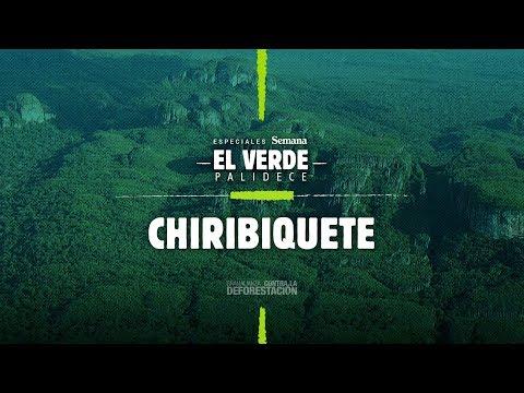 Chiribiquete La Capilla Sixtina De La Amazonia