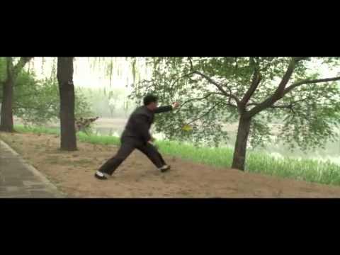 MAGUI BAGUA Promotional video 201207
