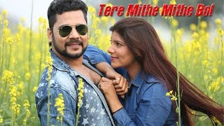 Tere Mithe Mithe Bol || Pawan Pilania || Sheenam Katholic || Rammehar Mahla || Arun Aryan 2016