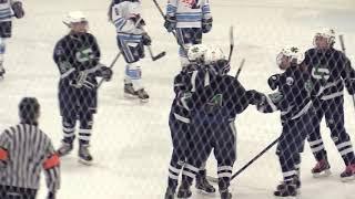 Cranbrook vs. Ladywood - 2018 Girls Hockey Highlights on STATE CHAMPS!