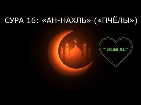 СУРА 16: «АН-НАХЛЬ» («ПЧЁЛЫ») Al Ashri Omran