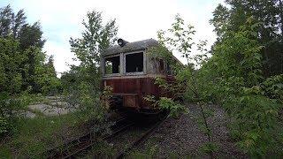 Заброшенная Железная дорога. Эти поезда уже никогда отсюда не уедут. Вагоны заросшие деревьями
