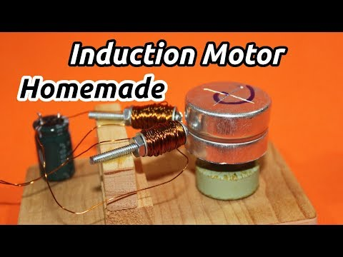 Make an AC Induction Motor