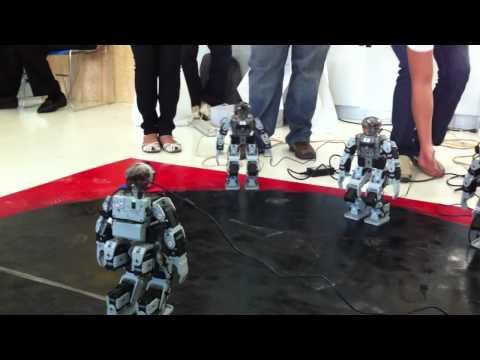 pelea-de-robots