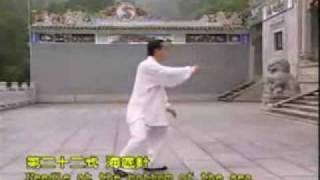 Tai Chi Yang style long form