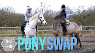 PONY SWAP! | Groom, Tackup and ride with us | This Esme