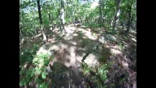 Mountain Biking - Greensfelder Dogwood Trail