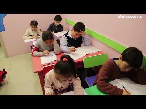 Panda Schoolda Sınaq imtahanları