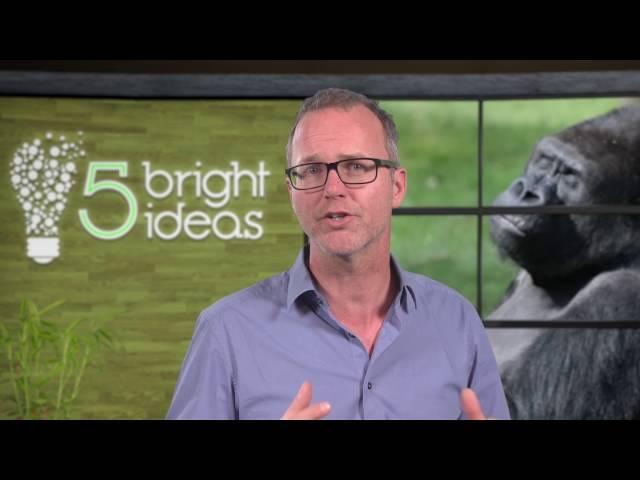 Patrick van Veen over gedrag in organisaties