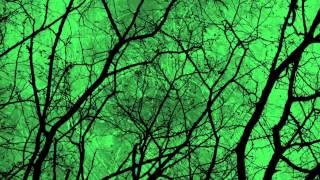 Type O Negative - Creepy Green Light - Subtitulos español
