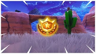 Search between an Oasis, Rock archway and Dinosaurs | Fortnite Season 5 Week 2 Challenges!