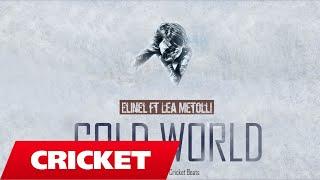 Elinel ft. Lea Metolli - Cold World