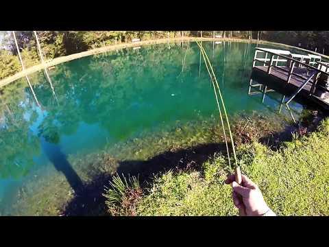 Fly Fishing Waddill Refuge Pond Baton Rouge Louisiana