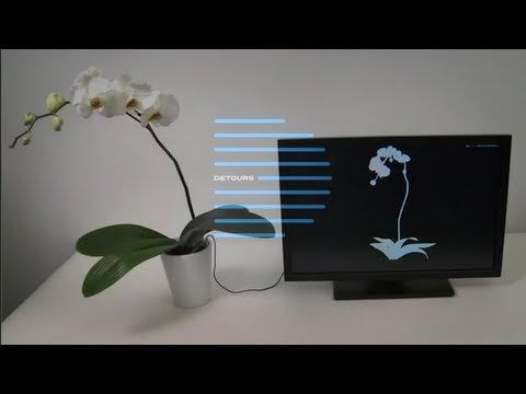 Detours: Disney researchers turn houseplants into theremin