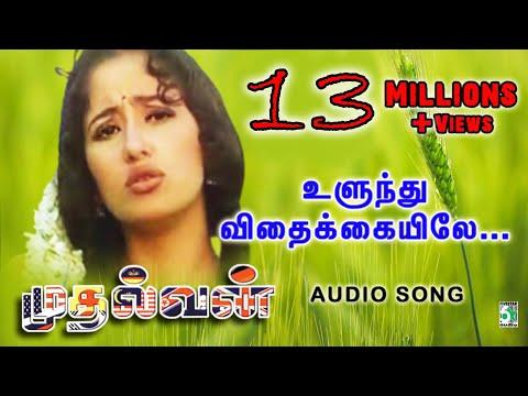 Ulundhu Vithakkaiyilae | Mudhalvan | A.R.Rahman Hits | Arjun