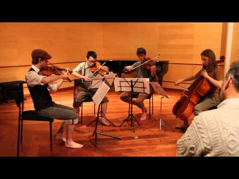 The Lord of the Rings for String quartet [HD] - V. The Return of The King