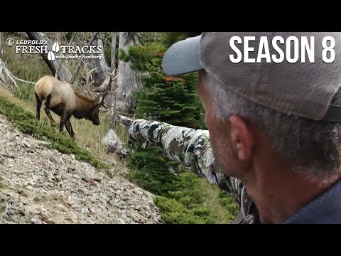 Bowhunting Elk IN THE RUT | Montana Archery Elk (Amazon Episode)