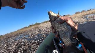 Боковой кивок рулит поплавок нервно курит Озеро Строево ловля карася на боковой кивок