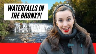 8 MORE places in The Bronx you CAN'T MISS (even locals will be surprised)