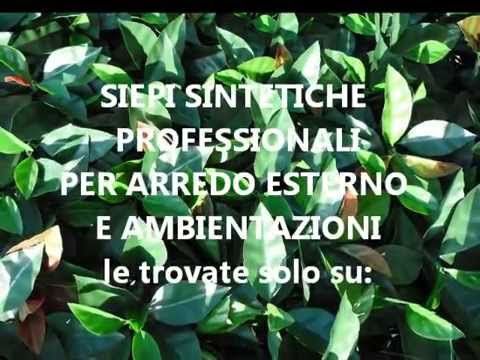 Siepi Da Giardino Finte : Siepi finte siepi sintetiche siepi in plastica tb wmv youtube