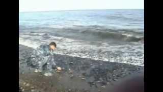 видео: Нерест мойвы в Охотске