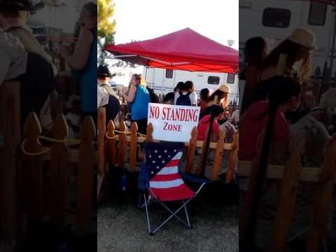 Festival in Nevada