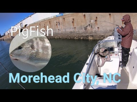 Fishing At Morehead City, NC