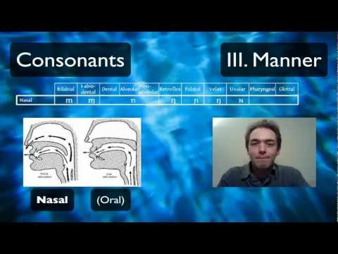 Pronunciation Tutorial 2: English Pronunciation and IPA: Manner