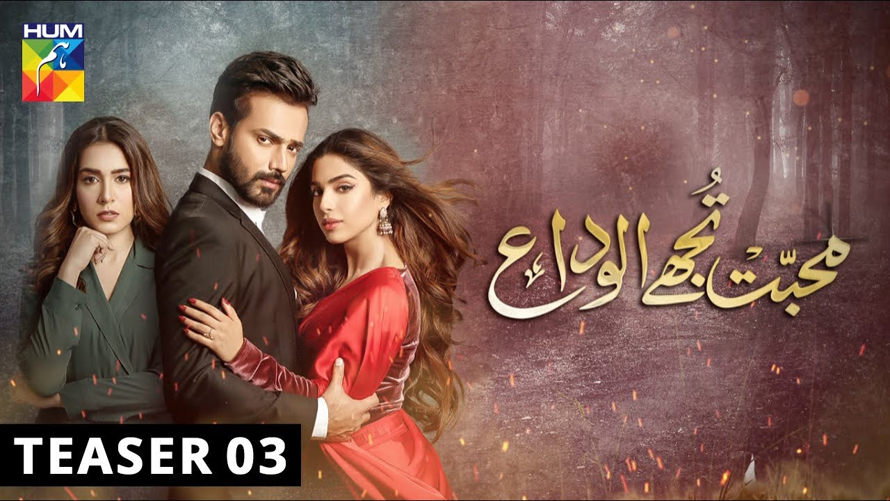 HUM TV Drama Mohabbat Tujhe Alvida Full Cast, OST, Full Story ...